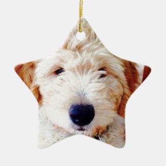 franco.jpg christmas ornament