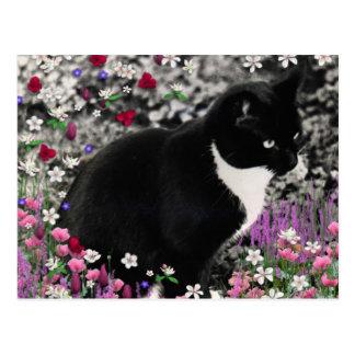 Freckles in Flowers II - Tuxedo Cat Postcard