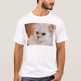 Freddie ~ Chinchilla Persians T-Shirt