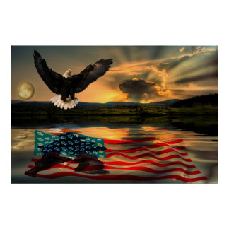 Freedom-Eagle-W-Flag-2010 Poster