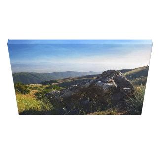 Fremont Peak State Park Canvas Print