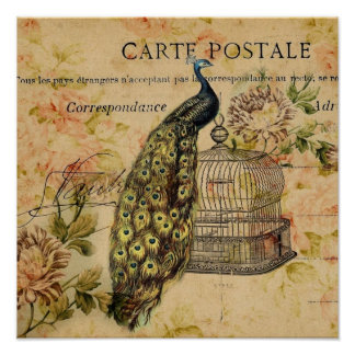 french botanical art nouveau vintage peacock poster