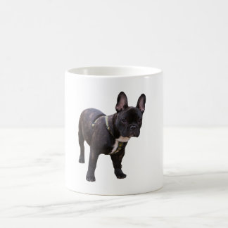 French Bulldog dog beautiful photo mug, gift Coffee Mug