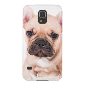 French bulldog. galaxy s5 cover