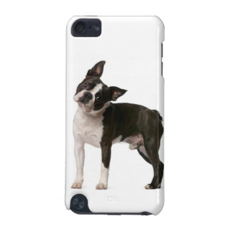 French bulldog - puppy dog - frenchie dog iPod touch 5G case