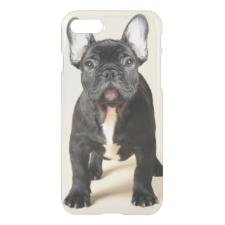 French Bulldog Puppy iPhone 8/7 Case