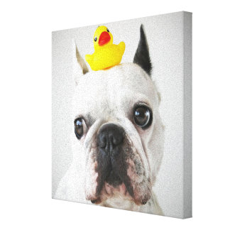 French Bulldog With Rubber Duck Canvas Print