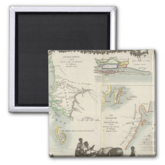 French Colonies in Africa Magnet