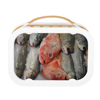 Fresh fish print lunchbox