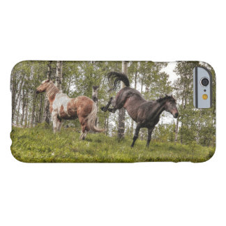 Friendly Buck Between Two Horses Barely There iPhone 6 Case