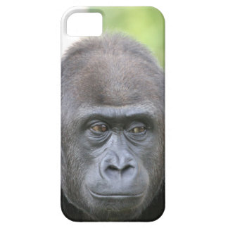 friendly gorilla iPhone 5 cover
