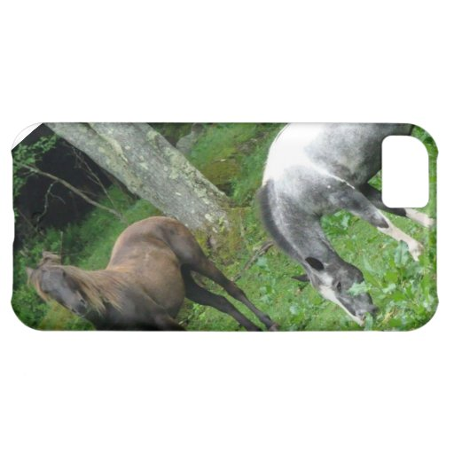 FRIENDLY HORSES iPhone 5C CASES