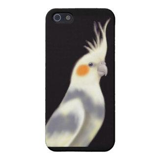 Friendly Pied Cockatiel Parrot iPhone Case iPhone 5 Cases
