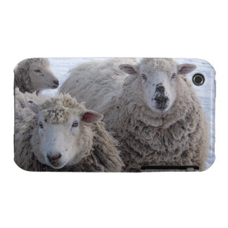 Friendly Sheep Case-Mate iPhone 3 Case