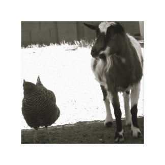 """Friends""  A Goat and A Chicken on Canvas"