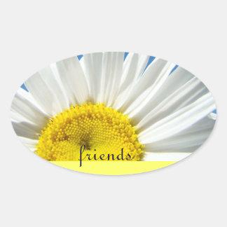 friends stickers White Diasy Flowers Invitaitons