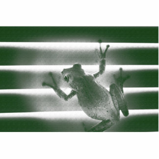 frog on blinds green sketch cool amphibian reptile standing photo sculpture