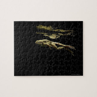 frog swimming in the dark just below the surface jigsaw puzzle