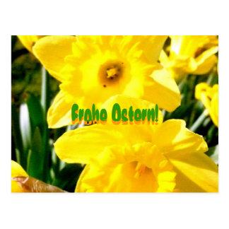 Frohe Ostern Yellow Daffodil Postkarte