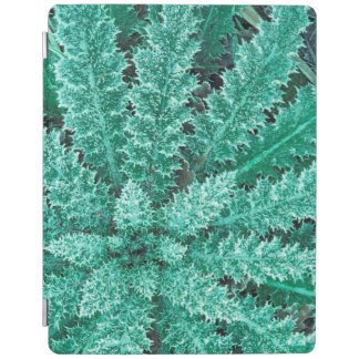 Frost On Thistle, Olympic National Park iPad Cover