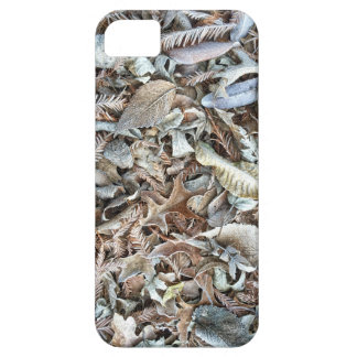 Frosty Leaves Case For The iPhone 5