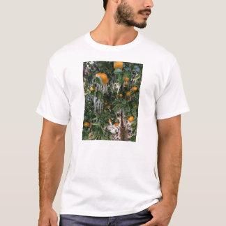 Frozen Citrus Tree T-Shirt