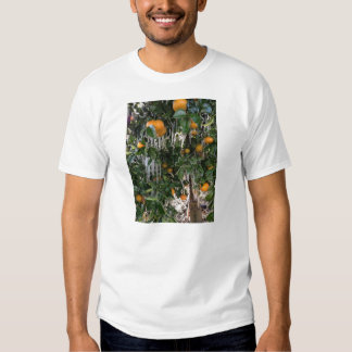 Frozen Citrus Tree Tee Shirt