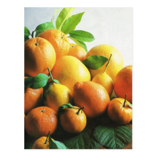 Fruit and vegetables oranges and lemons postcard