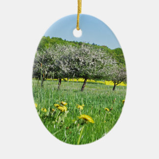 Fruit bloom time in a sea from dandelion and RAP Christmas Ornament