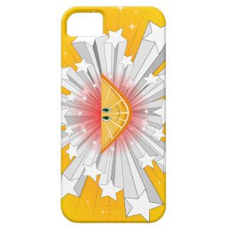 Fruit Orange iPhone Case iPhone 5 Covers