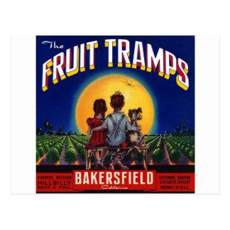 Fruit Tramp Fun Postcard
