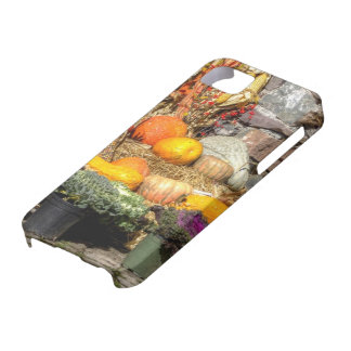 Fruits Of The Autumn Harvest iPhone 5 Case
