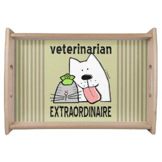 Fun Veterinarian Extraordinaire Serving Tray