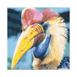 Funky Colorful Hornbill Tropical Bird Art Stretched Canvas Print