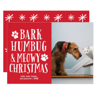 Funky Type Pets | Holiday Photo Card