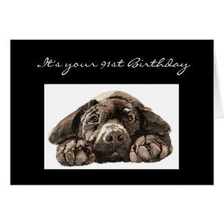 Funny 91st Birthday, Labrador Retriever Card