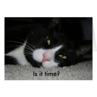 Funny birthday card with cat: Is it time?