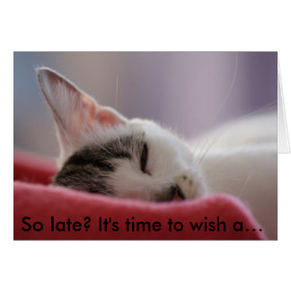 Funny Birthday Card with Cat: So late?
