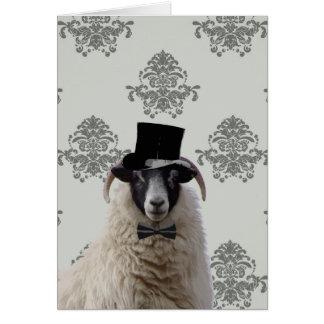 Funny bridegroom sheep in top hat card