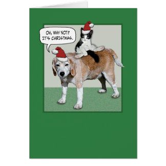 funny cat and dog christmas card