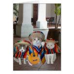 Funny Cats Spanish Birthday for anyone