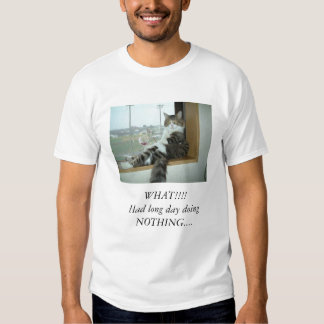 Funny cats t-shirts