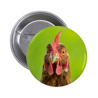 Funny Chicken - Button