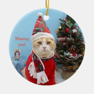 "Funny Christmas Cat ""Missing You!"" Christmas Ornament"