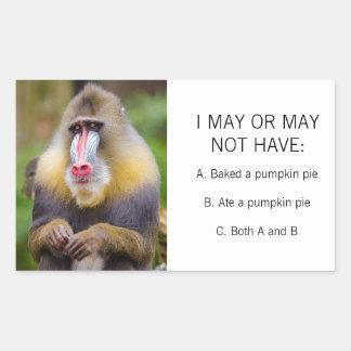 Funny Colorful Monkey Photo Pumpkin Pie Meme Rectangular Sticker