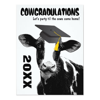 Funny Cow Graduation Congratulations Card
