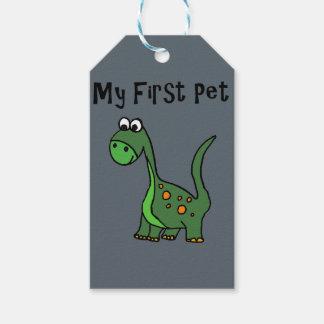 Funny Dinosaur Cartoon says My First Pet