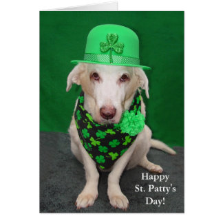 Funny Dog St. Patty's Day Card