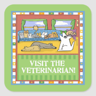 Funny Dogs and Cats Visit Veterinarian Square Sticker