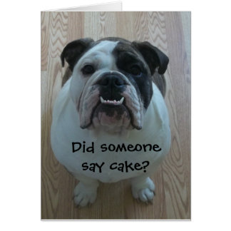 Funny English bulldog Happy Birthday Card